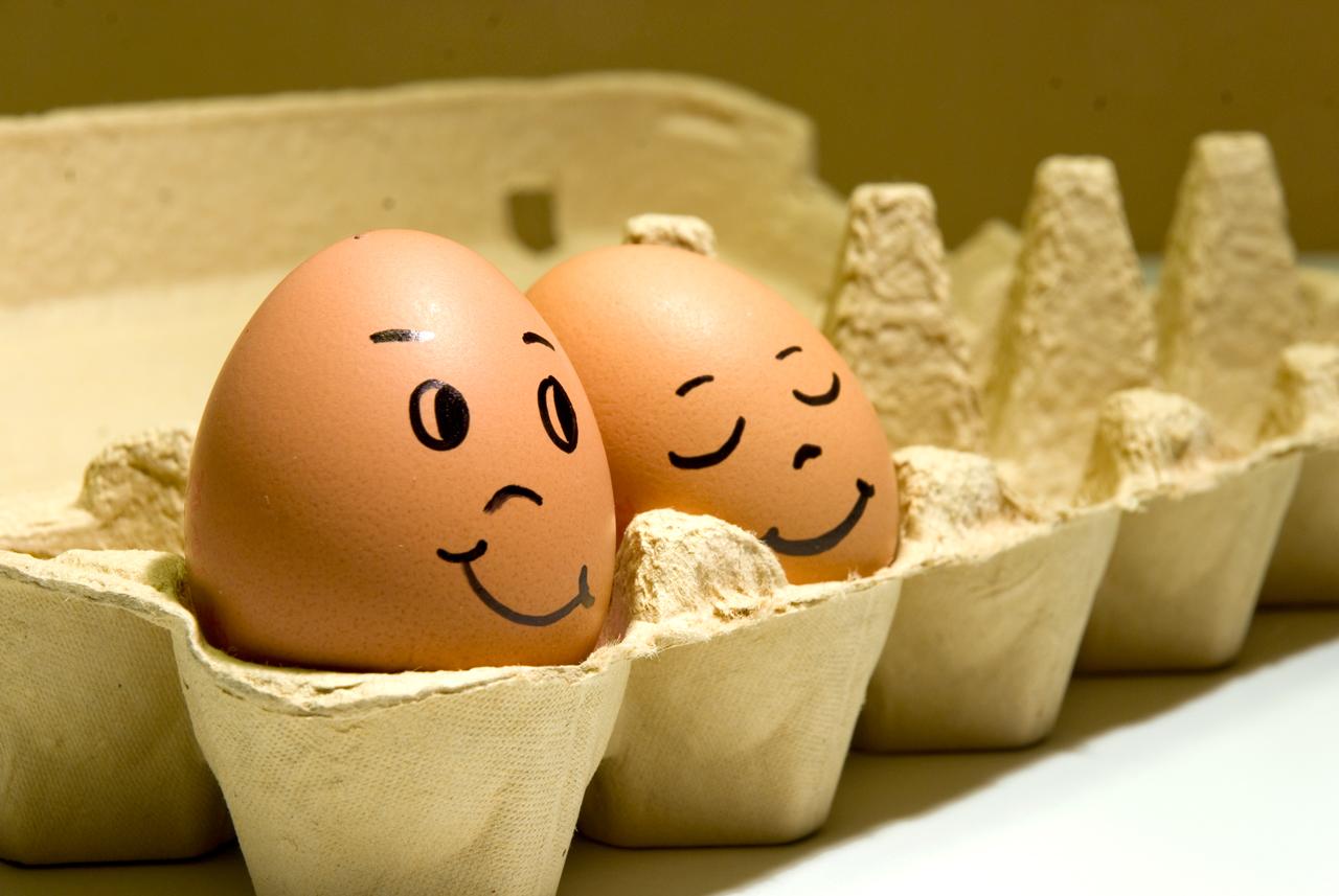 яйца 2