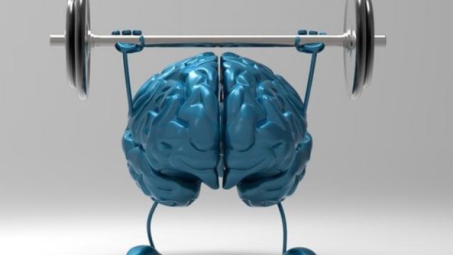 мозък 2