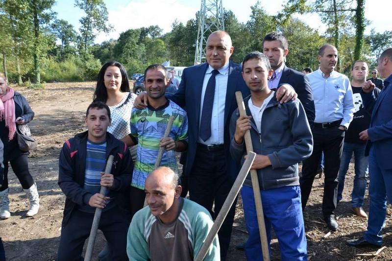 Борисов сади дървета