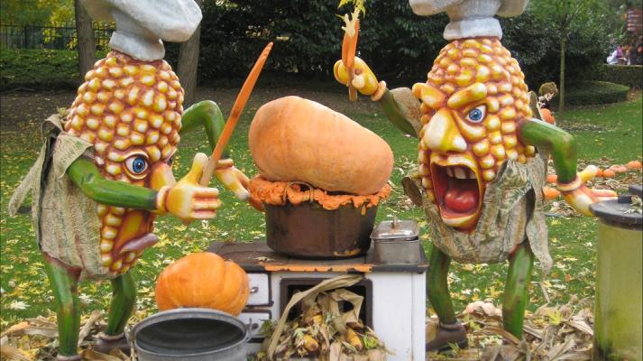 ГМО храни 1