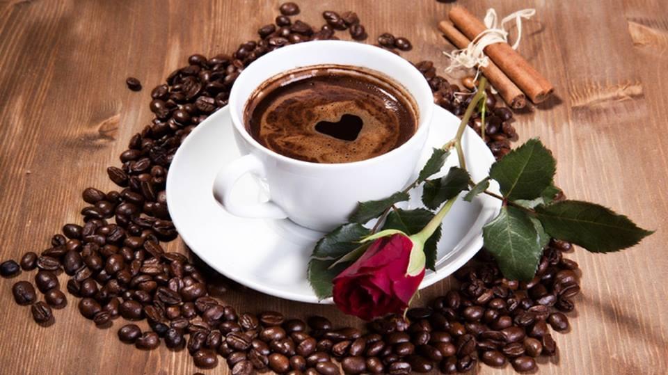 кафе роза