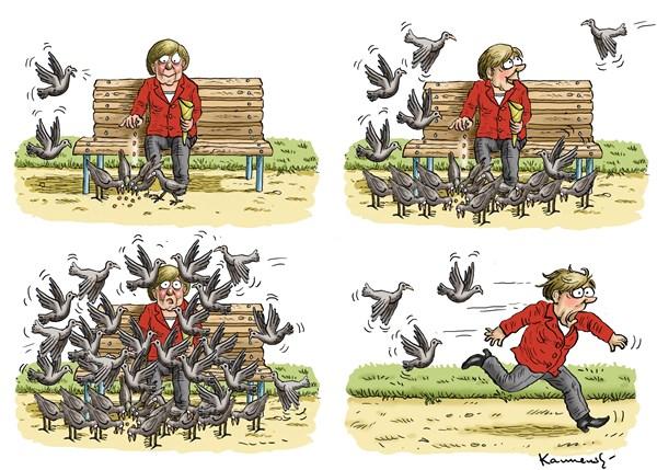 меркел и гълъби