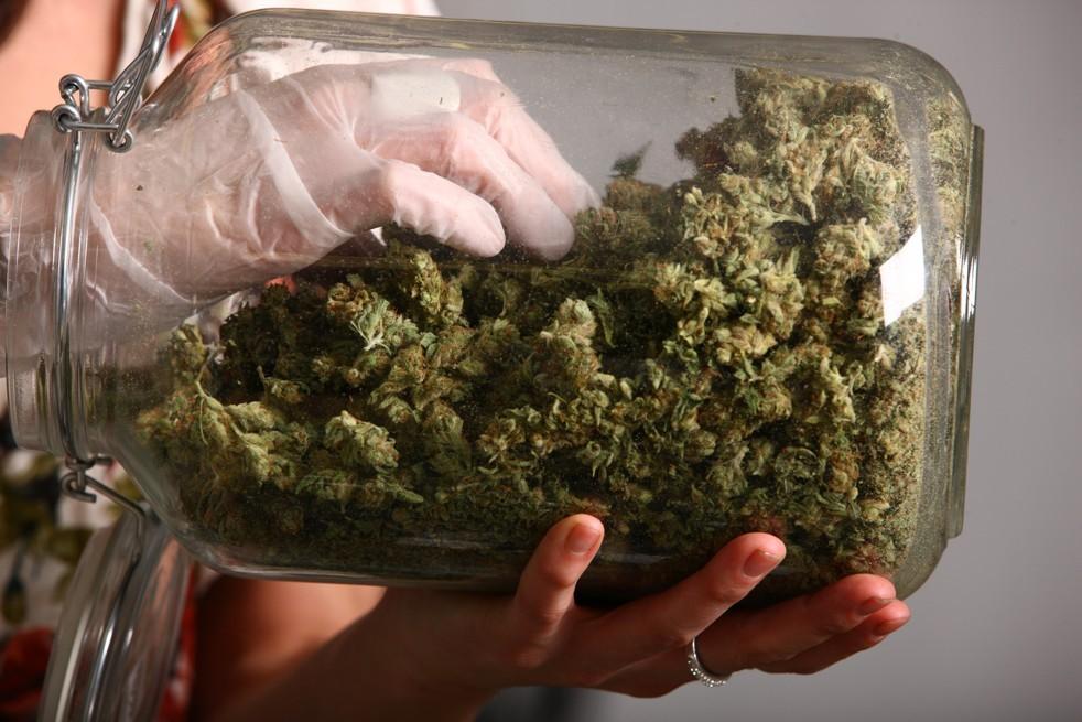 марихуана буркан