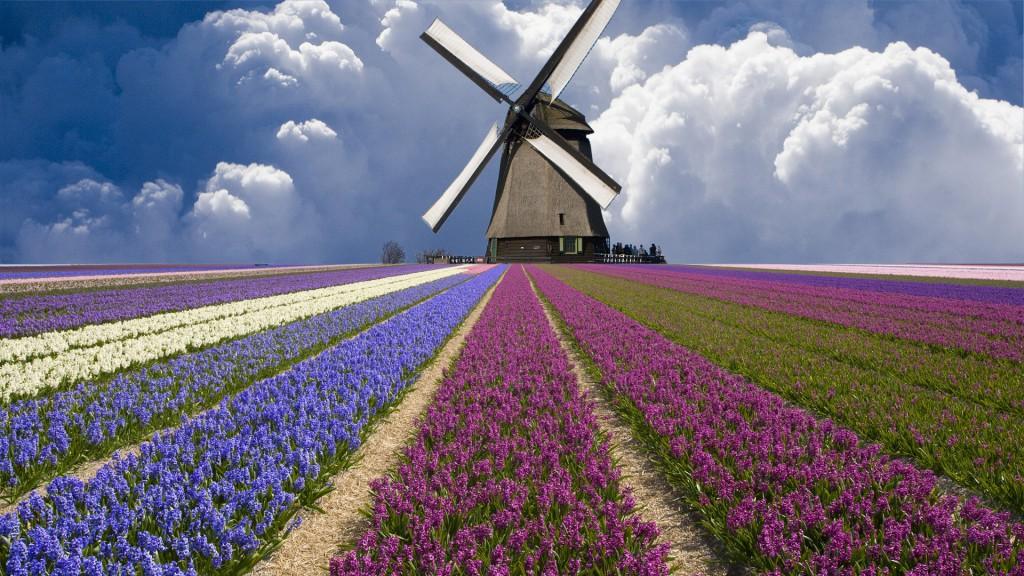 холандска вятърна мелница