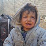 цената на свободата в Ирак